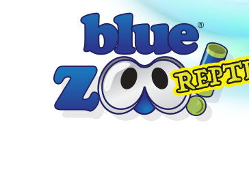 Blue Zoo Reptile
